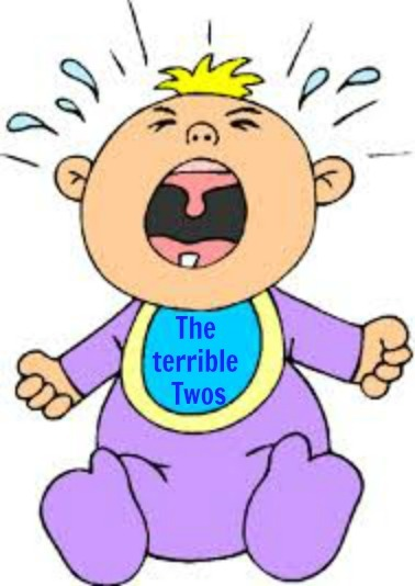 the-terrible-twos